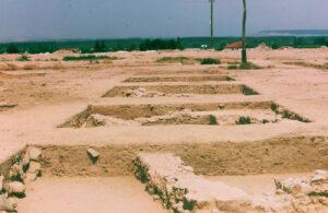 Vista de las excavaciones en el sector C. Foto J.A. Hernández Vera.
